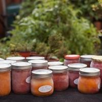 Photo Friday - Freezer Tomato Sauce w/ Recipe