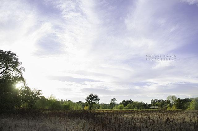 Laguna Skies CM