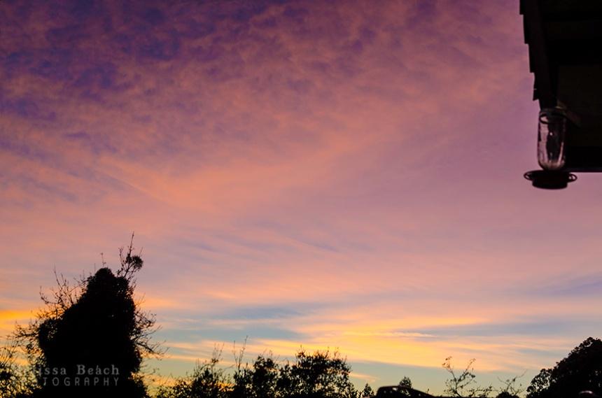 Purple Sunset870