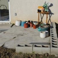 Settling In: Garden Plans